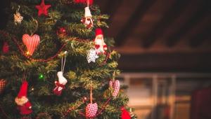 christmas shutter