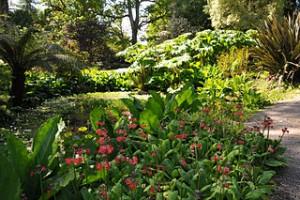 Brodick_Castle_Pond_Garden